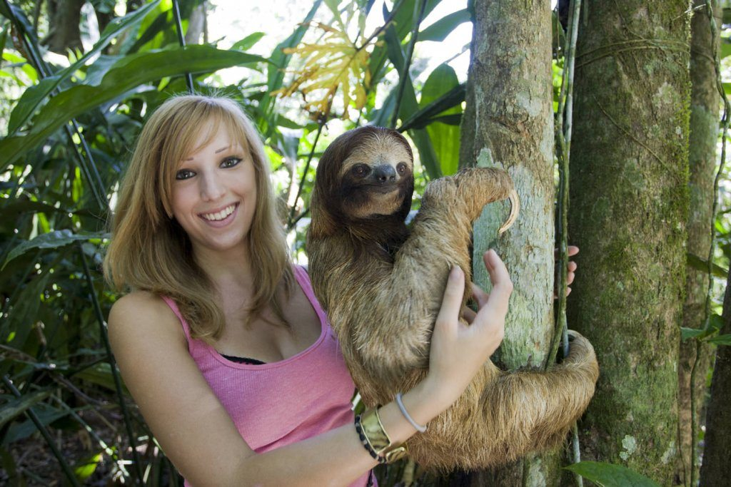 Sloths What S Your Passion Ladies What Travel