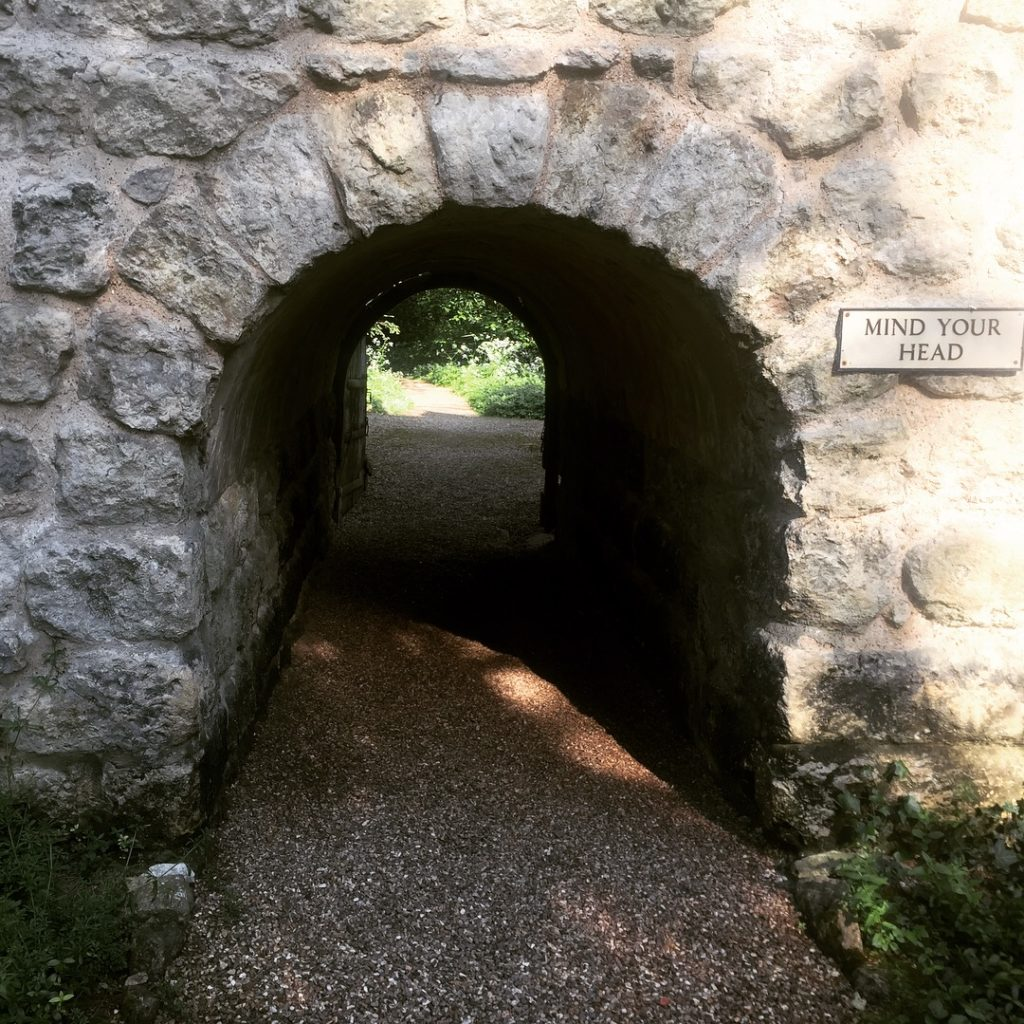 A tunnel found in the grounds