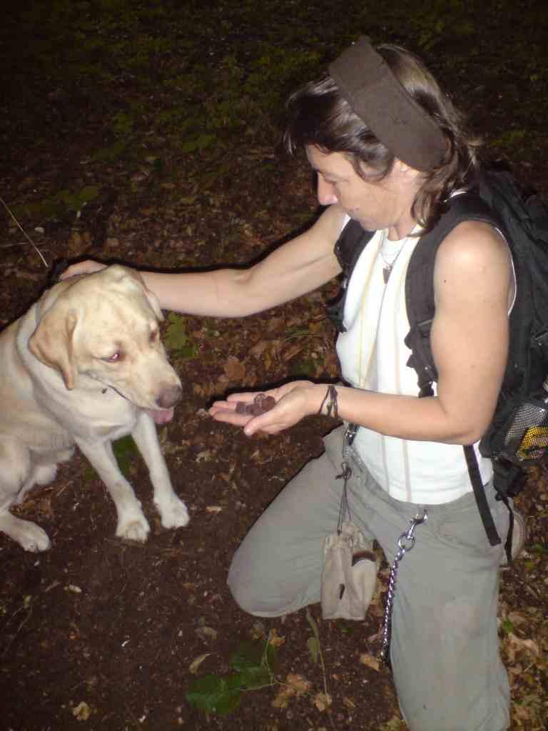 red truffle hunt