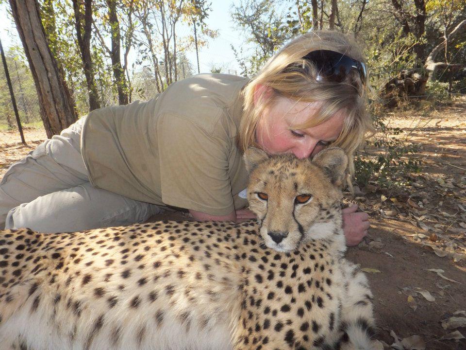 Emma the cheetah