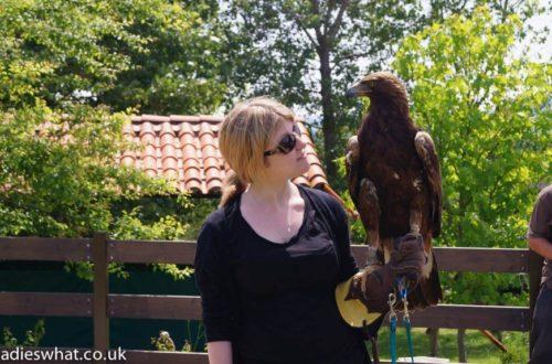 Cabarceno eagle