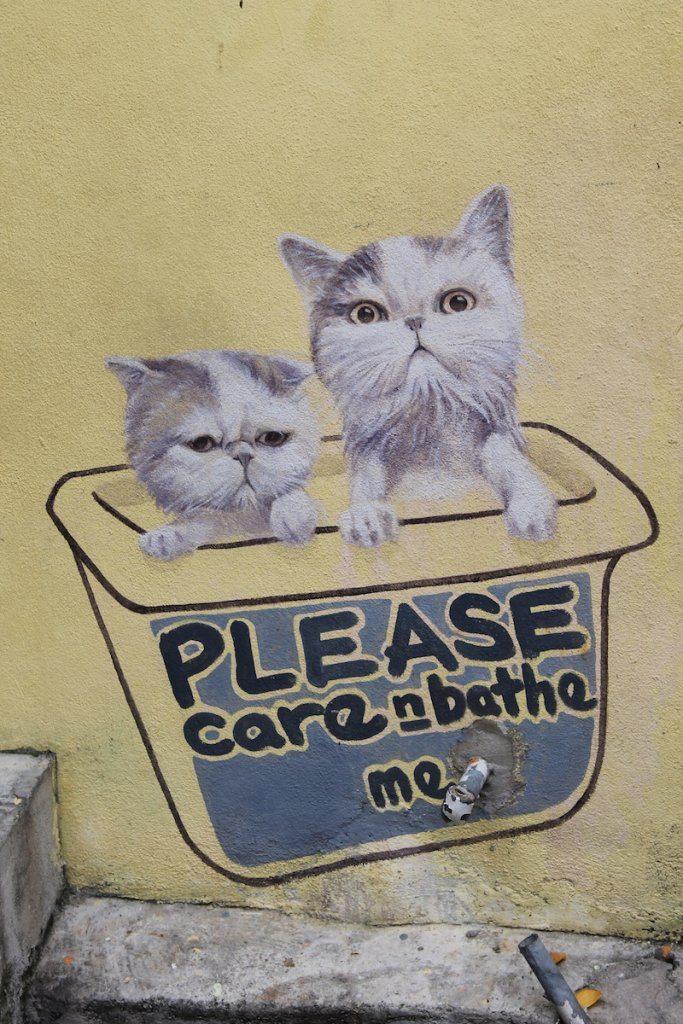 Please care and bathe me
