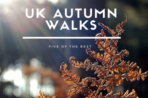 five of the best Uk autumn walks www.ladieswhat.co.uk