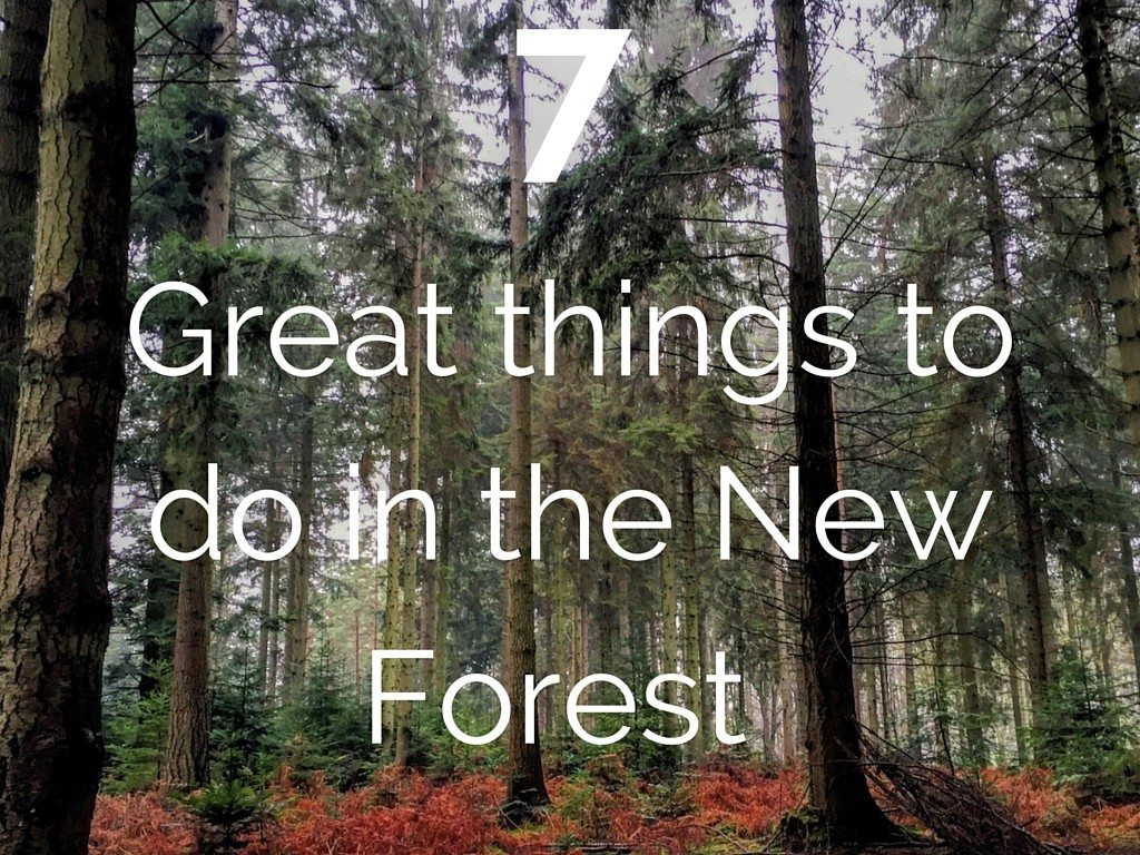 Things To Do New Forest Ladies What Travel