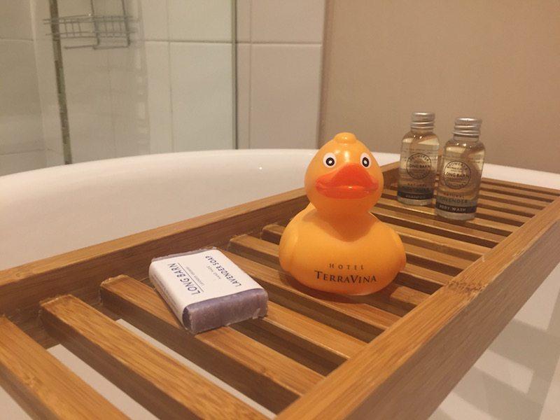 Hotel TerraVina duck