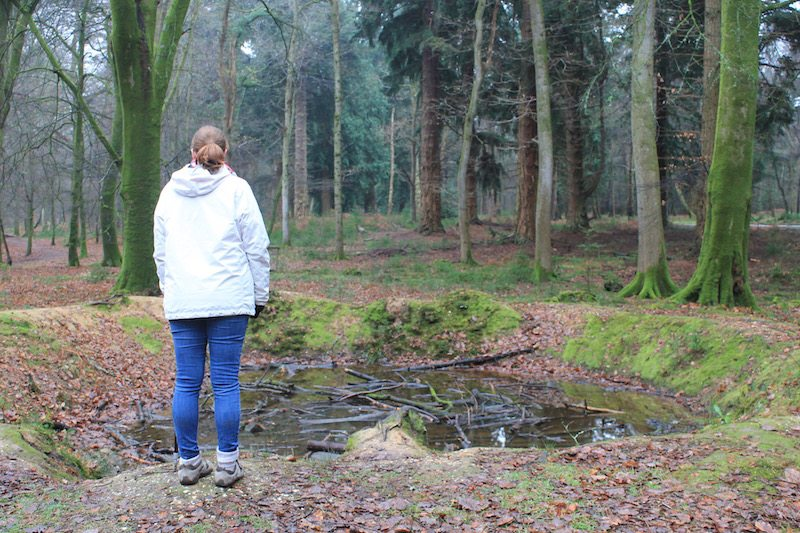 Discovering a World War II bomb crater during our walk in the New Forest!