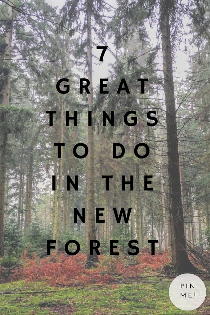 7 great things to do in the new forest.