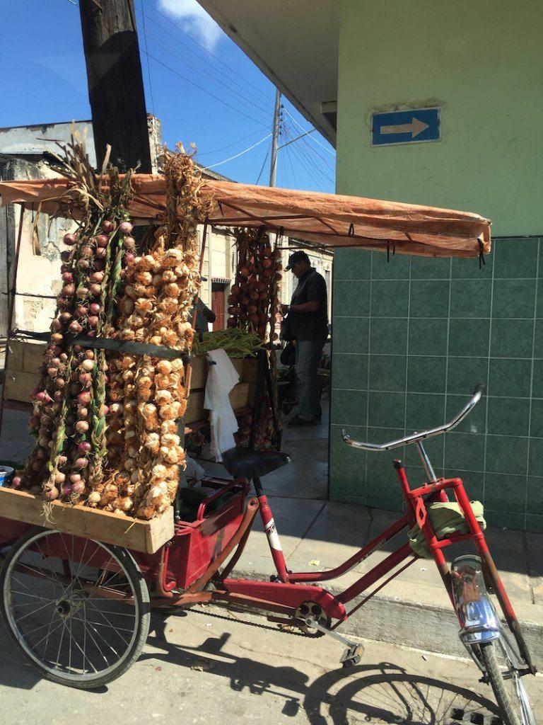 onion street vendor in matanzas cuba