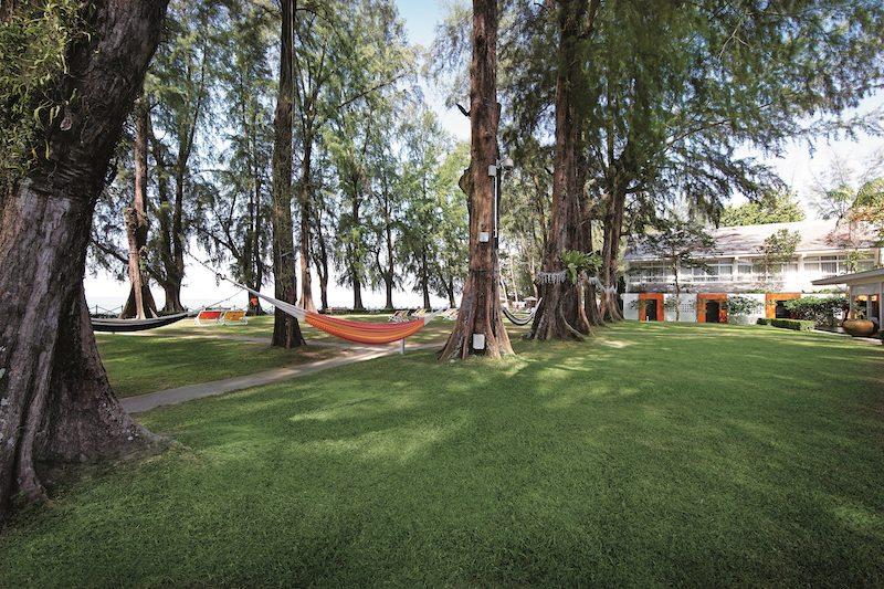 Lone Pine garden