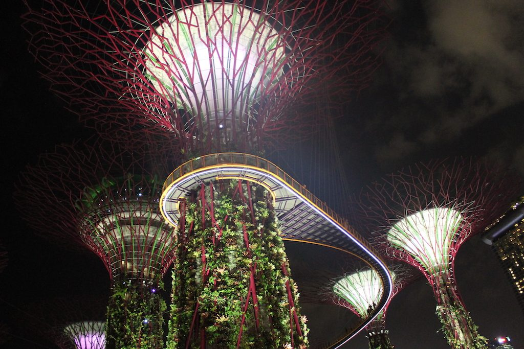 Supertrees lit up at Gardens By The Bay | Ladies What Travel