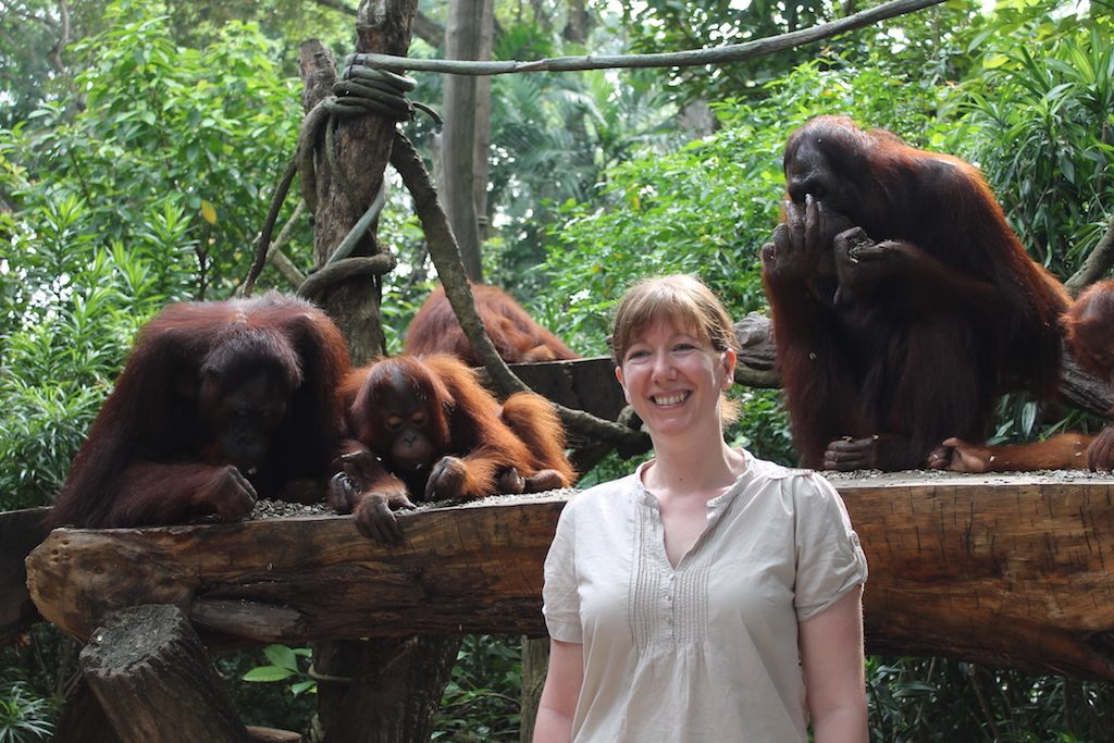 Breakfast with the Orangutans at Singapore Zoo| Ladies What Travel