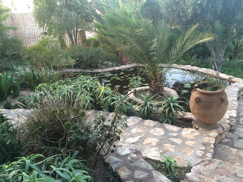 garden at Le Jardin des Douars