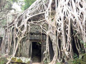 Ta Som Cambodia   Ladies What Travel