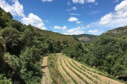Costa Daurada Spain | Ladies What Travel