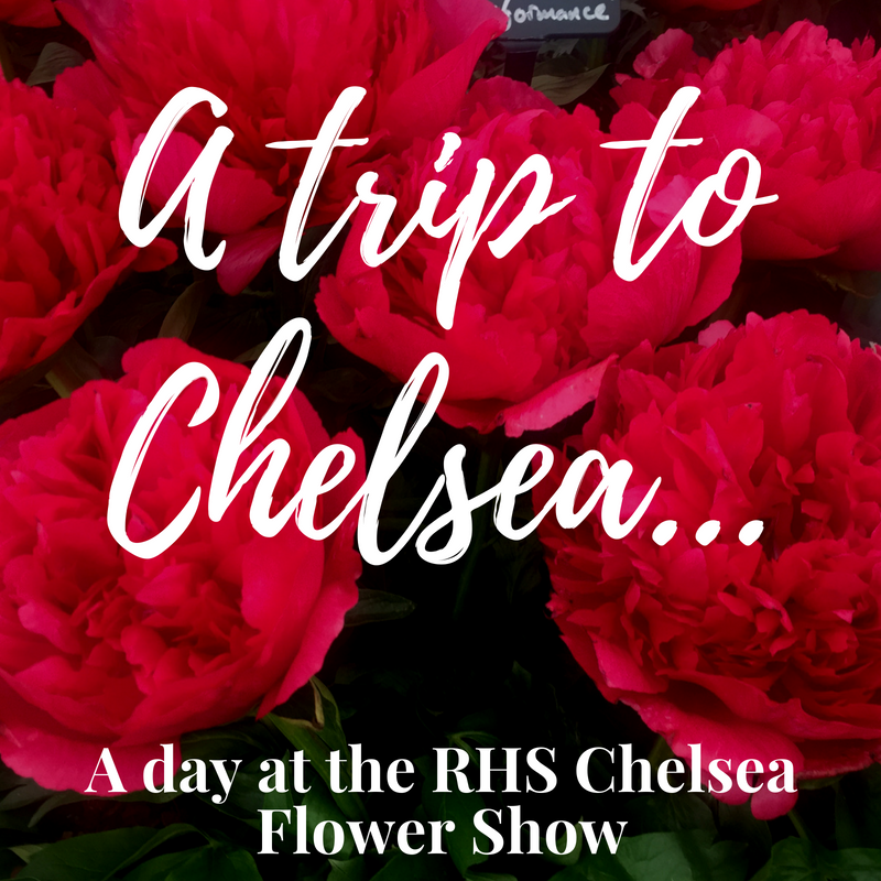 A trip to Chelsea...A day at the RHS Chelsea Flower Show | Ladies What Travel