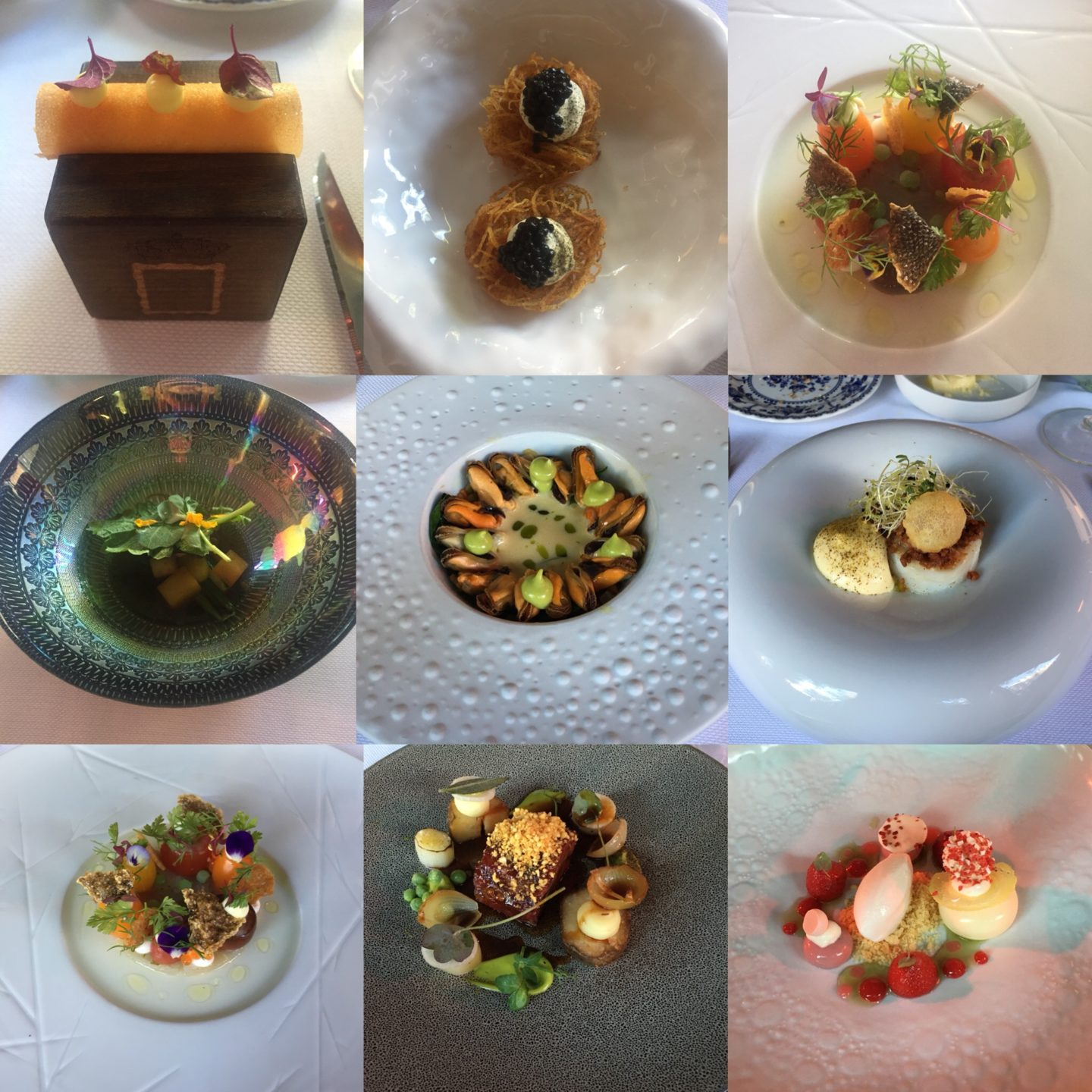 A collage image of the courses we had at De Silveren Spiegel