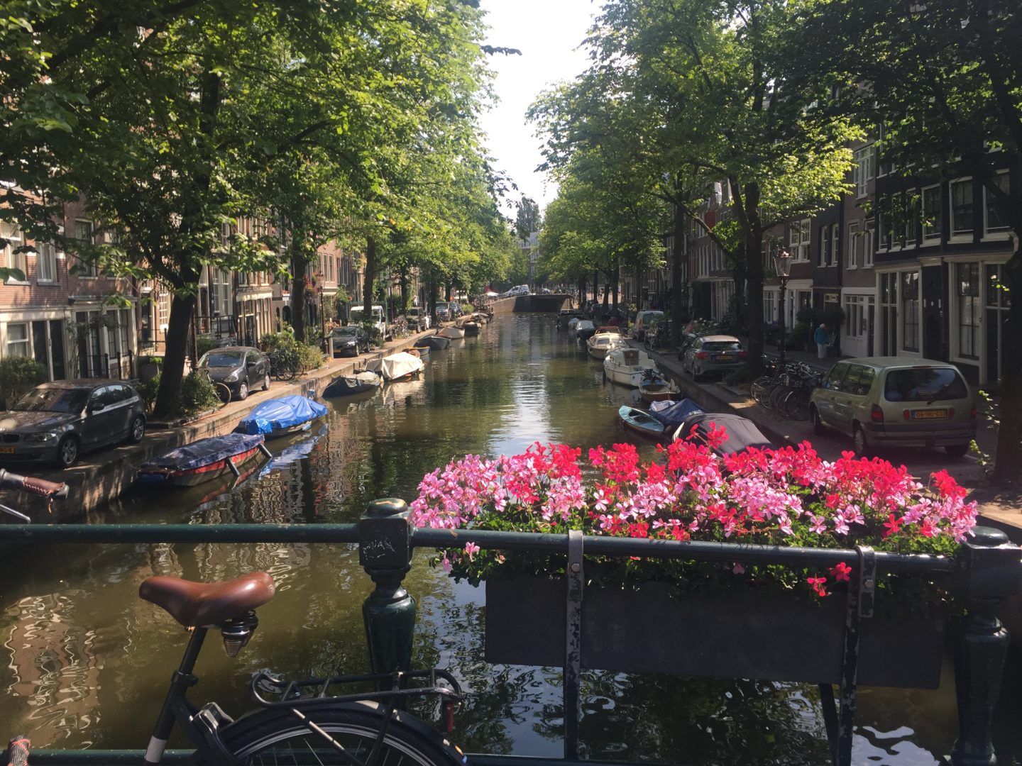 An Amsterdam canal with a bike and flower box.